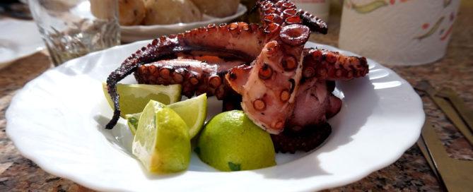 Oktopus gegrillt